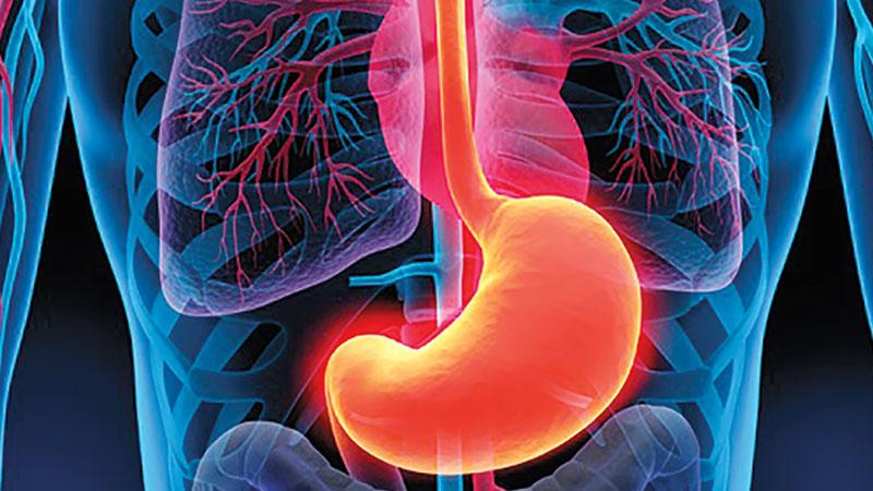 Beber una infusión de cola de caballo, cuachalalate, valeriana, y hojas de guayaba durante 10 días puede ayudar a calmar las molestias.