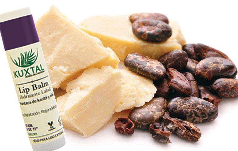 El Lip Balm de Kuxtal repara y suaviza los labios secos gracias a sus ingredientes naturales, como la manteca de cacao, que es antioxidante, y la manteca de karité, que hidrata; así como la miel, que restaura, y el aloe, que suaviza y humecta.