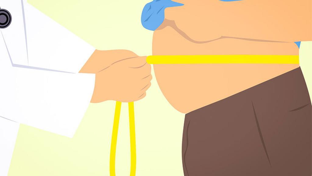 Sobrepeso Obesidad Diabetes Nutrióloga Médico Internista Ariana Paola Canche Arenas