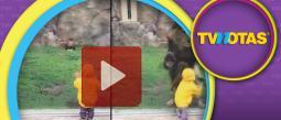 El video ya superó el millón de reproducciones en YouTube.