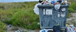 Captan a mujer tirando perritos recién nacidos en basurero