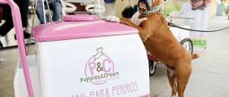 Está dedicada especialmente para consentir a tus mascotas.