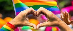 PRIDE Orgullo gay LGBT+ Marcha Digital México Junio 2020