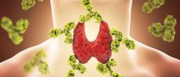 Causan: Alteran el sistema endocrino (glándulas como tiroides, páncreas, ovarios y testículos), haciendo que no funcione correctamente.