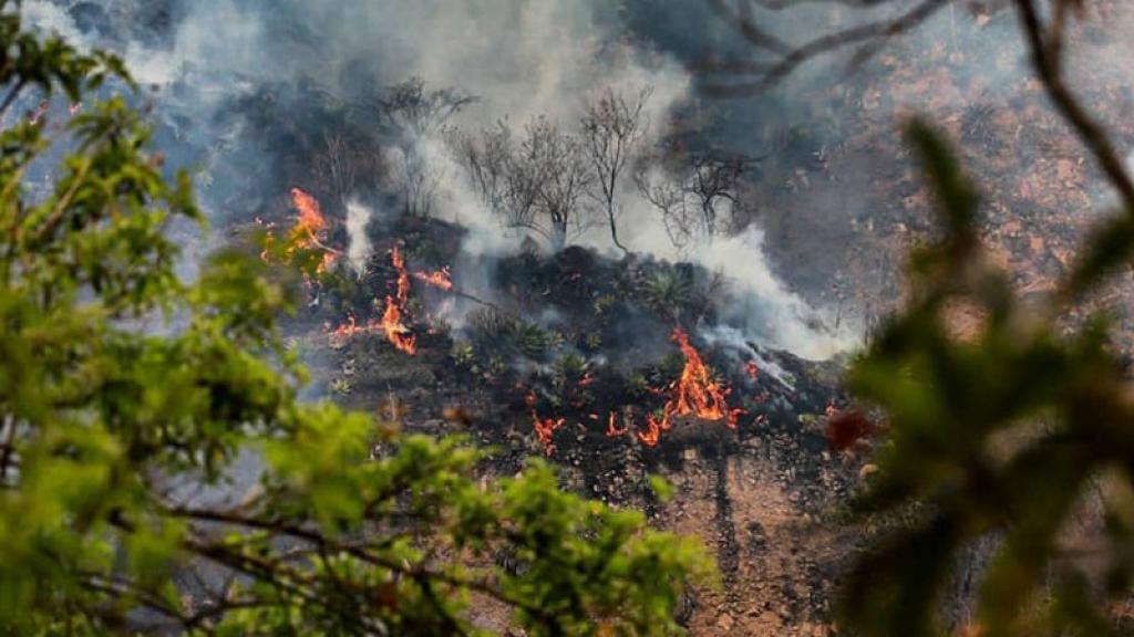 Mujer hace reto de Tik Tok y termina incendiando hectáreas en Tepoztlán